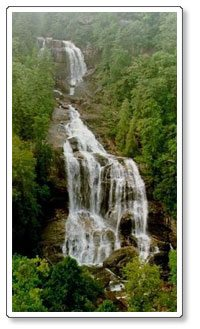 White Water Falls – Time for a Hike!