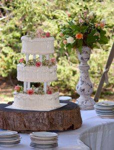 vintage outdoor wedding cake Lake Eden Asheville NC