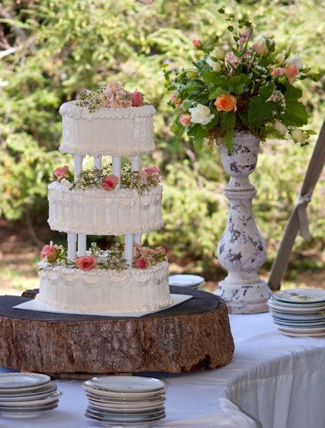 Vintage Outdoor Wedding Cake Asheville NC