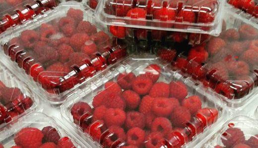 Fresh Raspberries from the Waynesville Historic Farmers Market